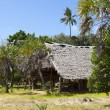 Hut on Funzi island in Kenya — Foto Stock