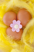 Chicken egg decorated for easter in yellow feathers — Stock Photo