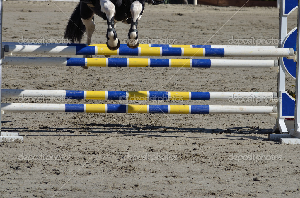 Horse jumping over the barrier  Stock Photo #13995441