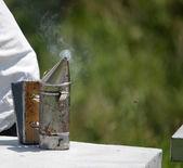 Arı sigara içenler — Stok fotoğraf