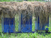Beehives under the hay — Stock Photo