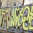 Graffiti — Stock Photo #35203515