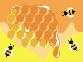 Bees on honeycells — Stockvector