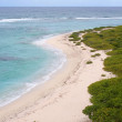 Coast of Barbuda — Stock Photo