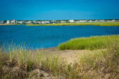 Estuary and grasses in coastal area of Cape Cod, Massachusetts — Stock Photo