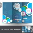Stock Vector: Tri-Fold Travel Mock up & Brochure Design