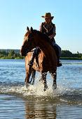 Dívka s koněm — Stock fotografie