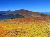 Borzhavskogo range. — Stock Photo