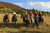 Equestrian tourism in the Carpathians — Stok fotoğraf