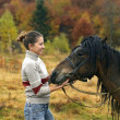 Stock Photo: Equestritourism in Carpathians