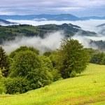 Spring landscape in mountains Carpathians — Stock Photo