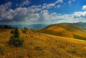 путешествие вдоль хребта летом — Стоковое фото