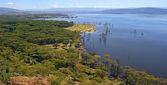 Lake Nakuru — Stock Photo