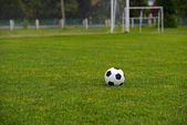 Leather soccer ball  — Stockfoto