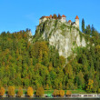 Old medieval town with Gornji Grad castle in Bled — Stock Photo