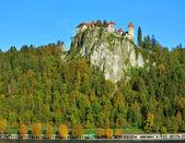 средневековый старый город с горний град замок в блед — Стоковое фото