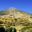 Ancient Mycenae, Greece — Stock Photo #33954599