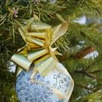 Christmas ball on a branch — Stock Photo