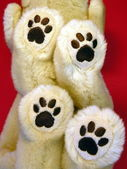Dogs foot, toy — Stock Photo