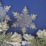 Snowflakes — Foto Stock #2484894