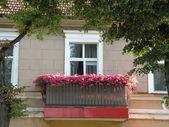 古いハウス外観 — ストック写真