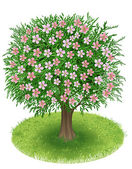 Blossoms Tree in green field — Stock Vector