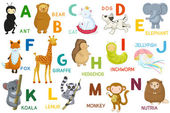 Letters and animals ABC — Stock Vector