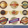 Royalty-Free Stock Vector Image: Leather gold-framed labels