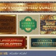 Leather gold-framed labels — Stock Vector #13550787
