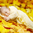 Autumn newborn baby sleeping in maple leaves. — Stock Photo