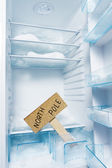 Fridge with frost and North Pole sign. — Stock Photo