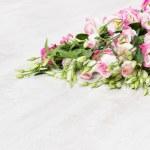 Lisianthuses flower bouquet lying on white floor — Stock Photo