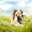 Kissing bride and groom in sunny grass — Stock Photo #23583795