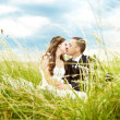 Kissing bride and groom in sunny grass					 — Stockfoto