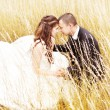 Beautiful bride and groom  in grass.  Wedding couple outdoors		 — Zdjęcie stockowe