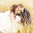 Beautiful bride and groom  in grass.  Wedding couple outdoors		 — Стоковая фотография