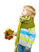 Child in woolen scarf holding maple leaves — Stock Photo