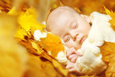 Autumn newborn baby sleeping in yellow maple leaves. — Stock Photo