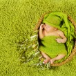 Baby newborn sleeping in woolen hat over green carpet — Стоковая фотография