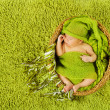 Baby newborn sleeping in woolen hat over green carpet — ストック写真
