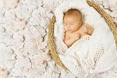 Baby newborn sleeping in art basket on white leaves — Stock Photo