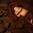Baby newborn artistic portrait, kid sleeping in woolen hat on brown autumn fallen leaves — Stock Photo #43659845