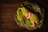 Baby newborn portrait, kid sleeping in woolen hat on brown wooden background — Zdjęcie stockowe
