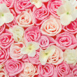 Roses flower pattern background. Floral pink texture. — Stock Photo #46504703