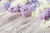 Lilac flowers on wood background, blossom branch on vintage wooden texture — Stock Photo