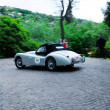 Постер, плакат: Silver Jaguar XK120 OTS during the 1000 Miglia in Brescia