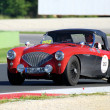Постер, плакат: Red and black Austin Healey 1004 BN1 1954 drives in the Autodromo di Vallelunga during 1000 Miglia