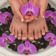 Stock Photo: Pedicure and Manicure