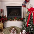 Christmas Time - Stockfoto