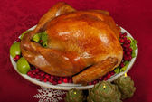 Christmas Turkey — Stock Photo